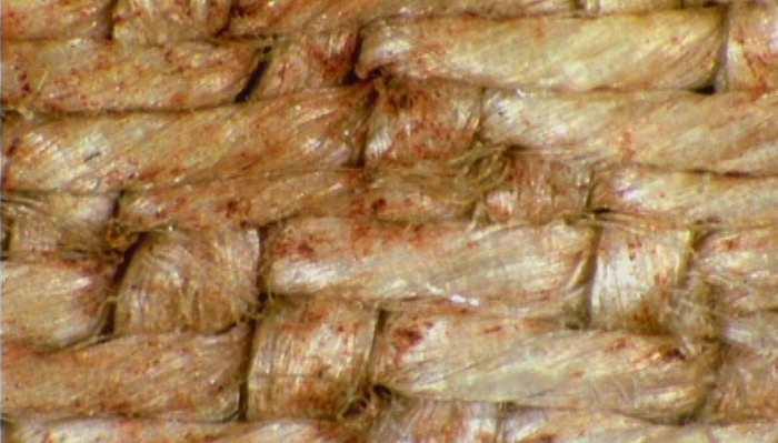 Resultado de imagen de lino sindone